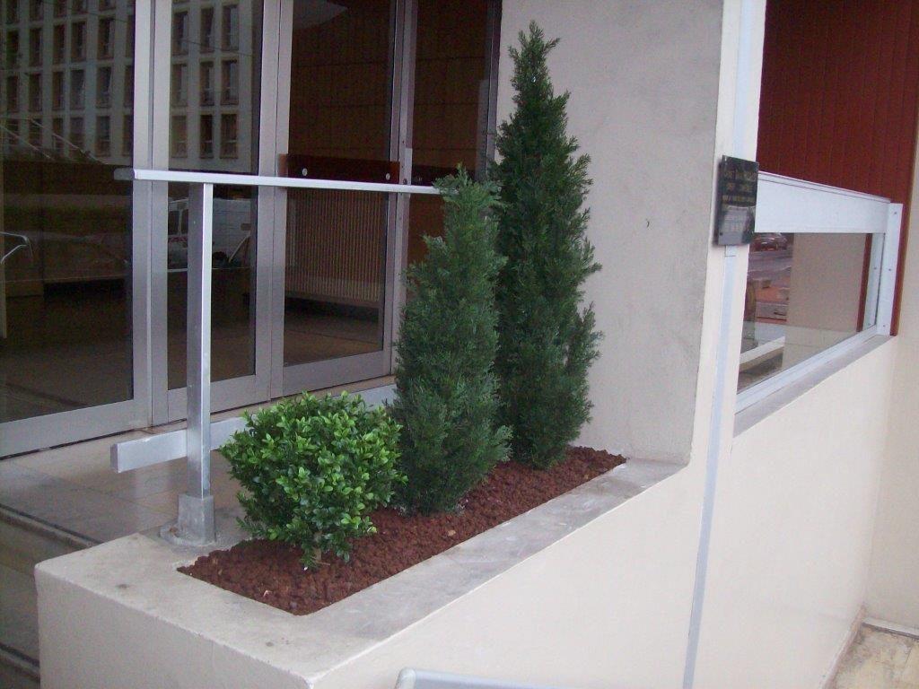 pose vente location de plantes artificielles d cines